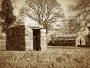 Struell Wells 2, Downpatrick