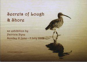 Secrets lough shore landscape